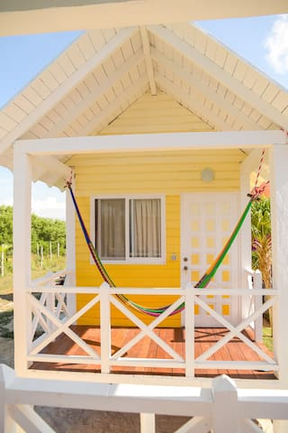 Why Knot Yellow - Holbox