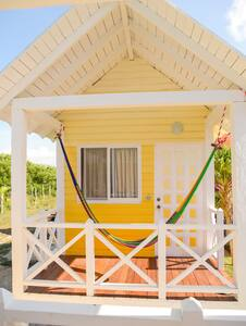 Why Knot Yellow - Holbox - 小木屋