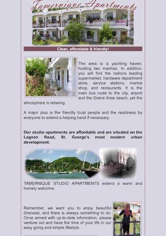 TAMERNIQUE APARTMENTS - Saint George's