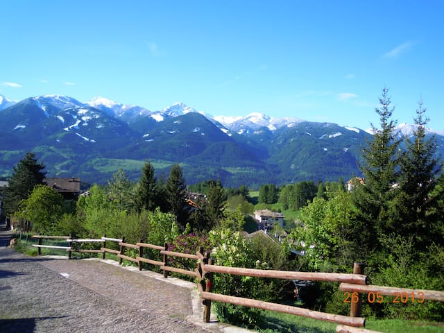Holidays in Fiemme Valley - Varena - Apartment