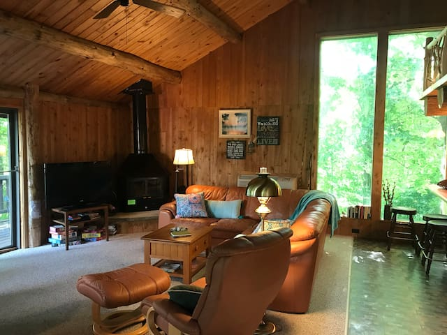 Living room with wood burning fireplace.  Tv with DVD player