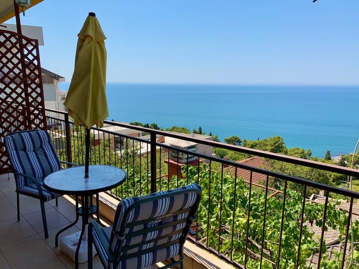 Apartments Nisavic 1 (Perfect view)