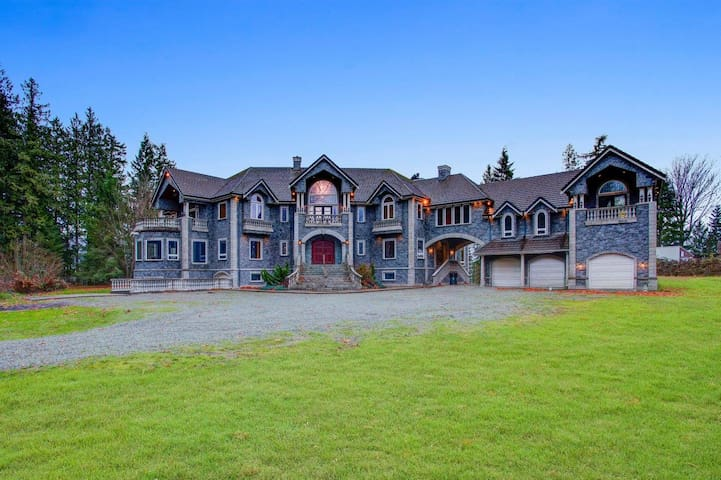 20,000+sq ft Luxury Castle on 5+ acres