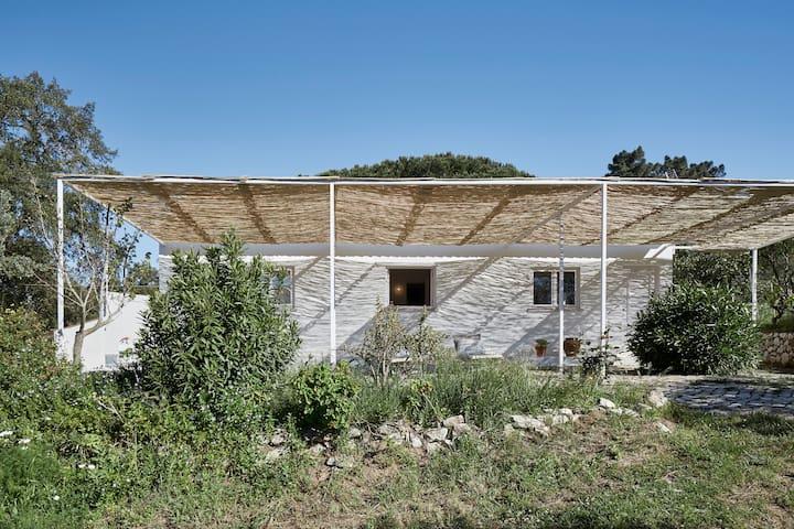 House + Pool + Mountain = Casa de Baixo - São Lourenço (Vila Nogueira de Azeitão) - Casa