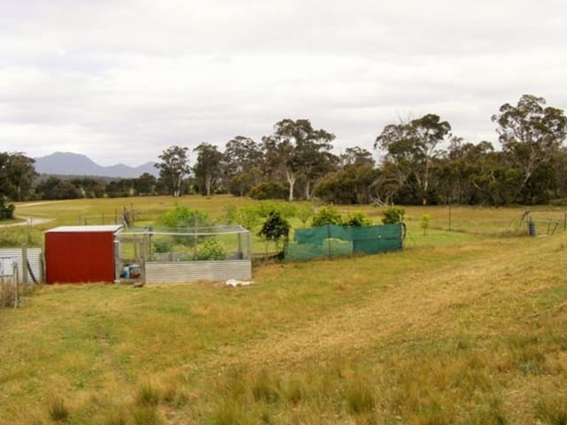 Red Tin Shed. Eco lodge bush retreat. Life Detox.