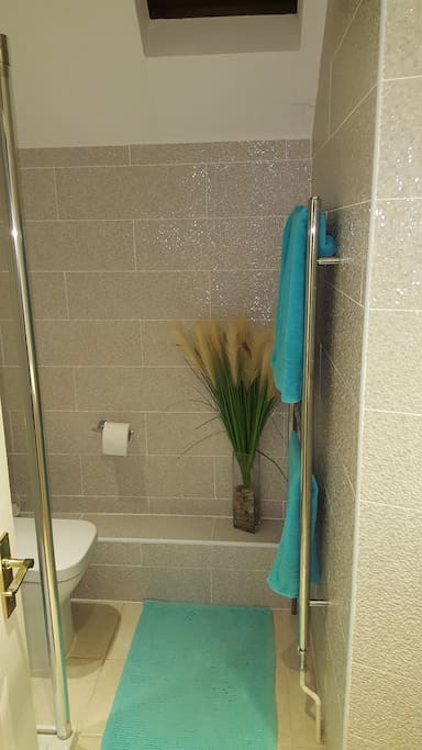 Shower room for sole use of B&B guests.