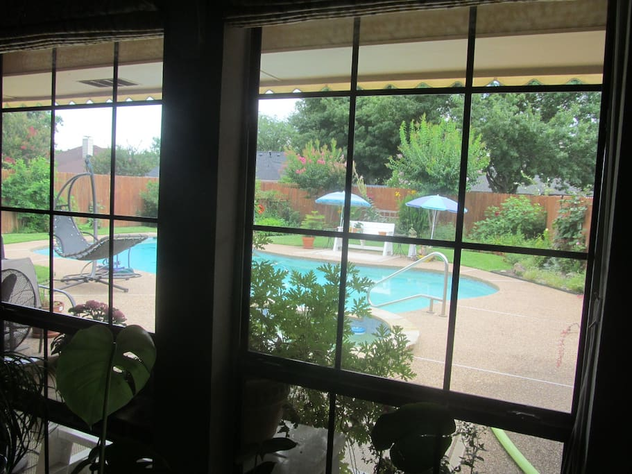 View of pool from living room