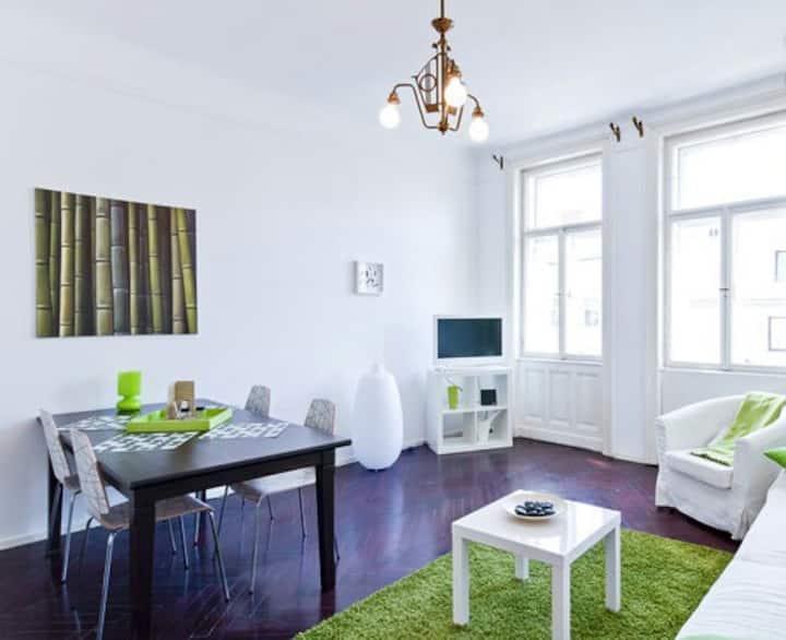 Beautiful spacious apartment in the nobel area