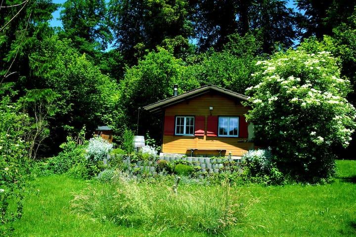 Ferienhaus mitten in der Natur - Jonschwil