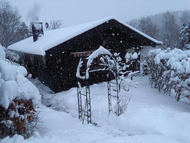 Landjagdhaus Willingen - Willingen (Upland) - Casa
