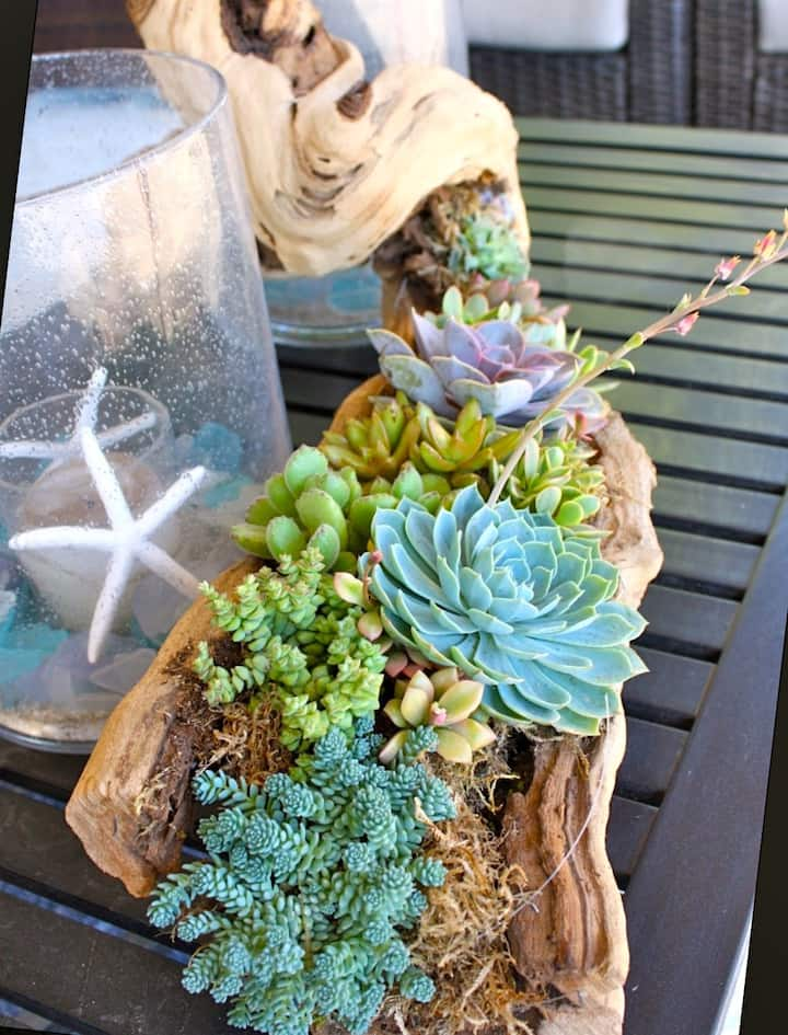 incorporate driftwood and other elements