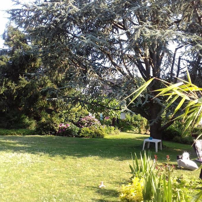 Jardin de 1000m2 au calme avec grande terrasse