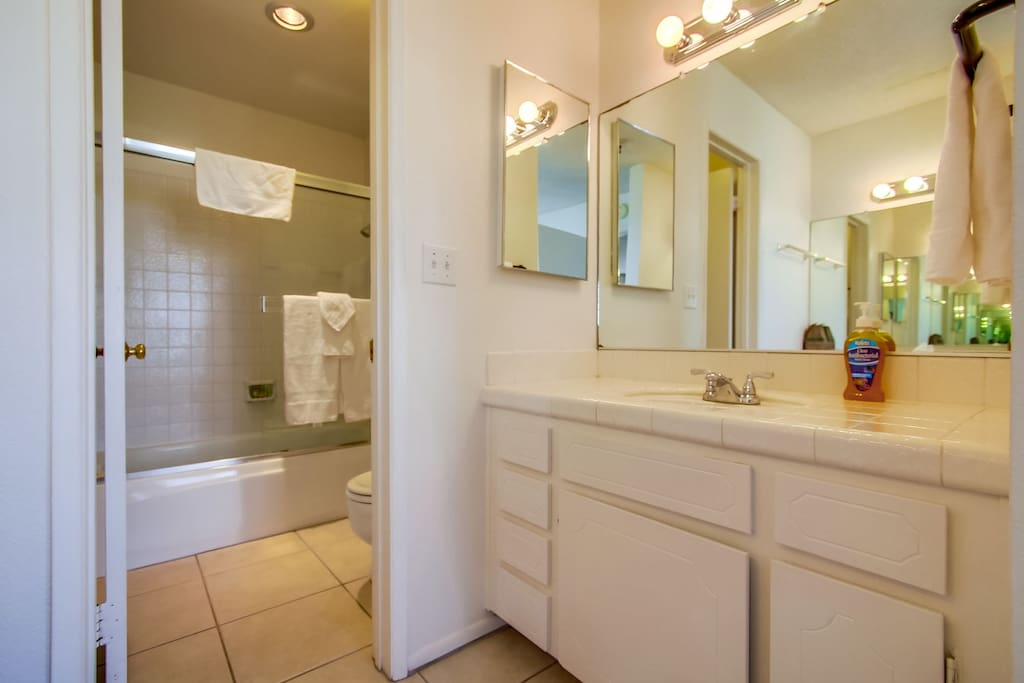 Master bathroom suite, shower/tub combo