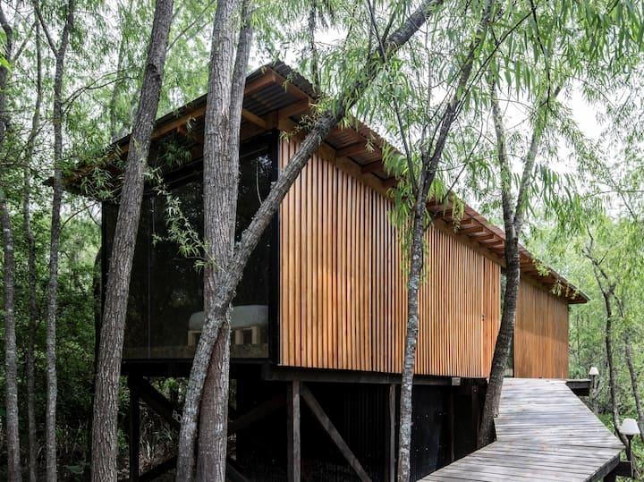 Moderna Casa de Diseño en Barrio Naútico del Delta