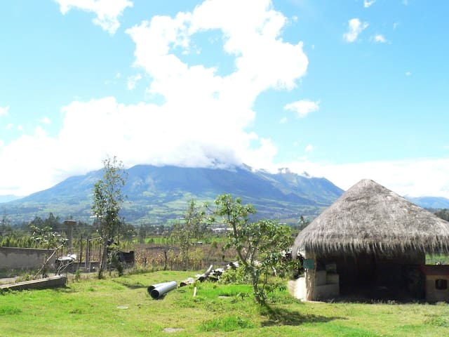 Homestay at Organic Farm in the Andes