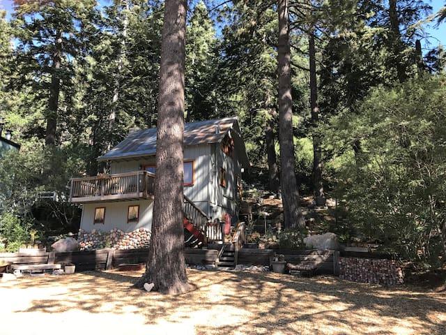 Romantic Treetop Hideaway