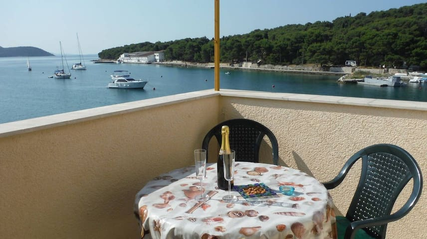 Apartment Mira with balcony and sea view - Prvić Luka - อพาร์ทเมนท์