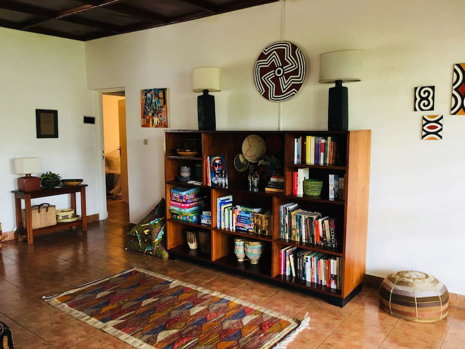 Book shelf with mini travel and regional political analysis library
