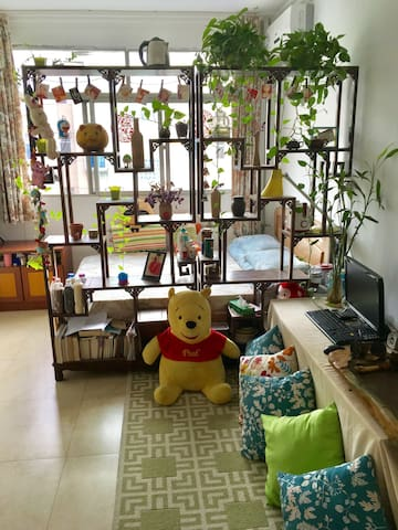 地铁口整套房房主不同住 - 郑州市 - Casa