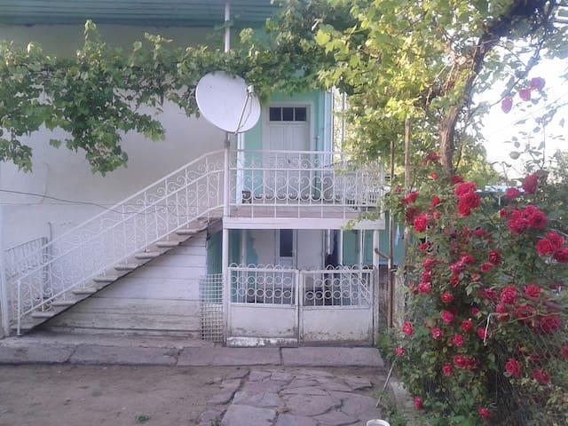 Fedia`s House - Adigeni