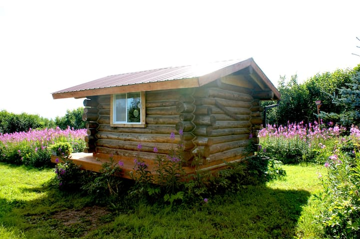 East side of cabin