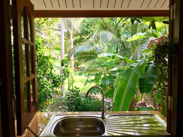 Beautiful House around the Palms of Haad Salad