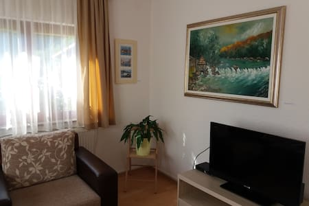 Apartment Una Strbacki Buk