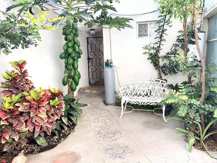 Apartamento Independiente con Jardín  Céntrico