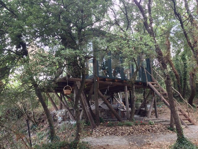 The Tree house in Ano Korakiana - Άνω Κορακιάνα - Casa en un árbol