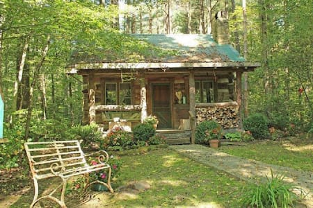 A 150 year old real log cabin with a claw foot tub!