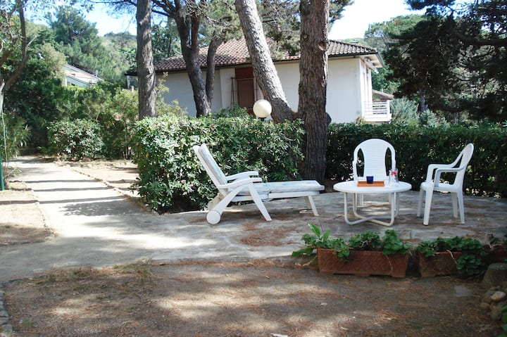 Apartment whit garden AZZURRO n° 1