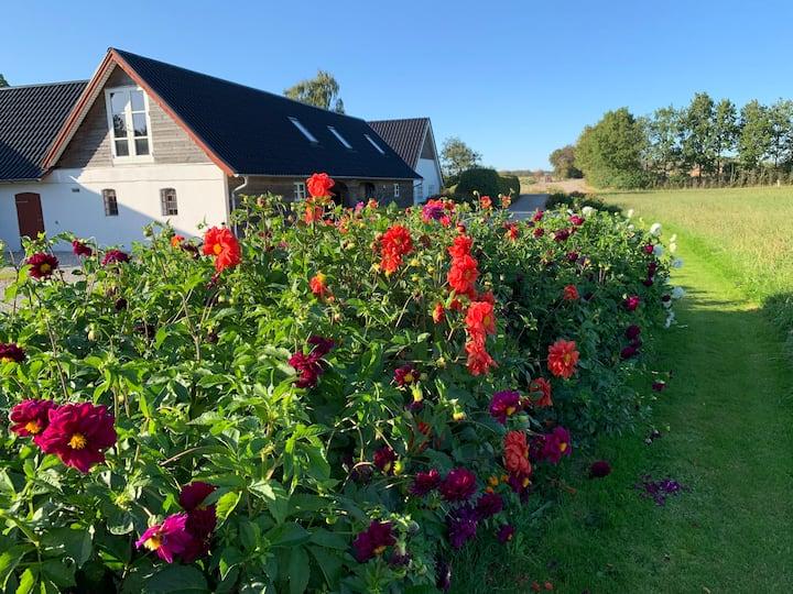 Moderne bolig i landlige omgivelser og idyl