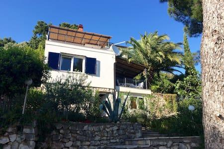 Fantastic seaside villa with garden and beachfront