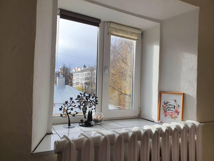 Уютная квартира у Театралки