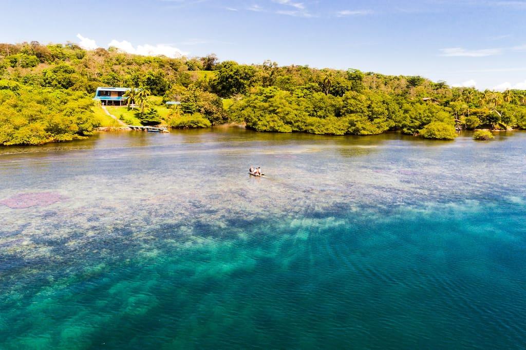 El Caribeo - Coralreef