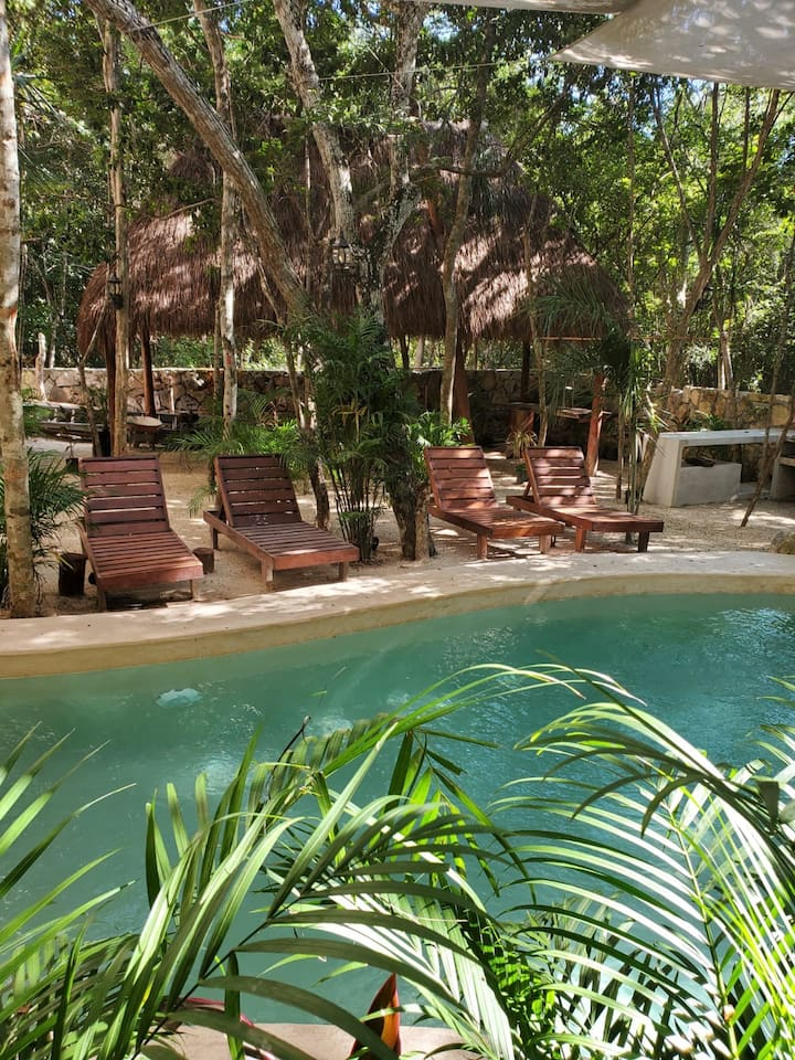 Jungle style one bedroom apartment with pool view