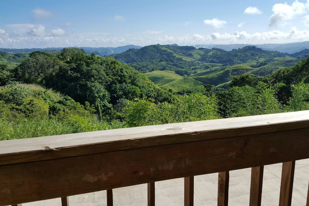 barranquitas dating Its comfortable and fully equipped apartments for singles or couples, enjoy spacious interiors,  employees of casa barranquitas are marvelous, .
