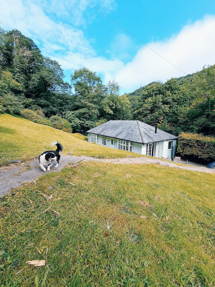 Secluded River Cottage in 1 Acre + Pool (may-sep)