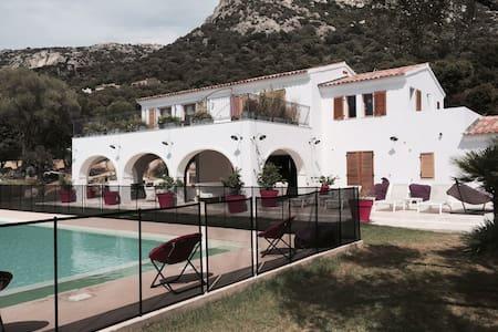 Superbe Villa  400 m2 avec piscine - Lumio - Vila
