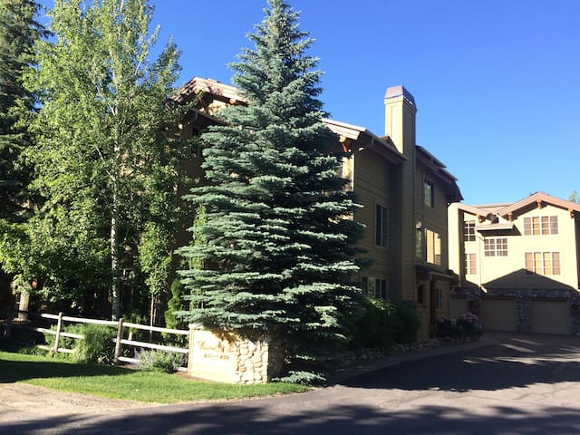 Luxury Sun Valley Condo - Walk to Skiing & Town
