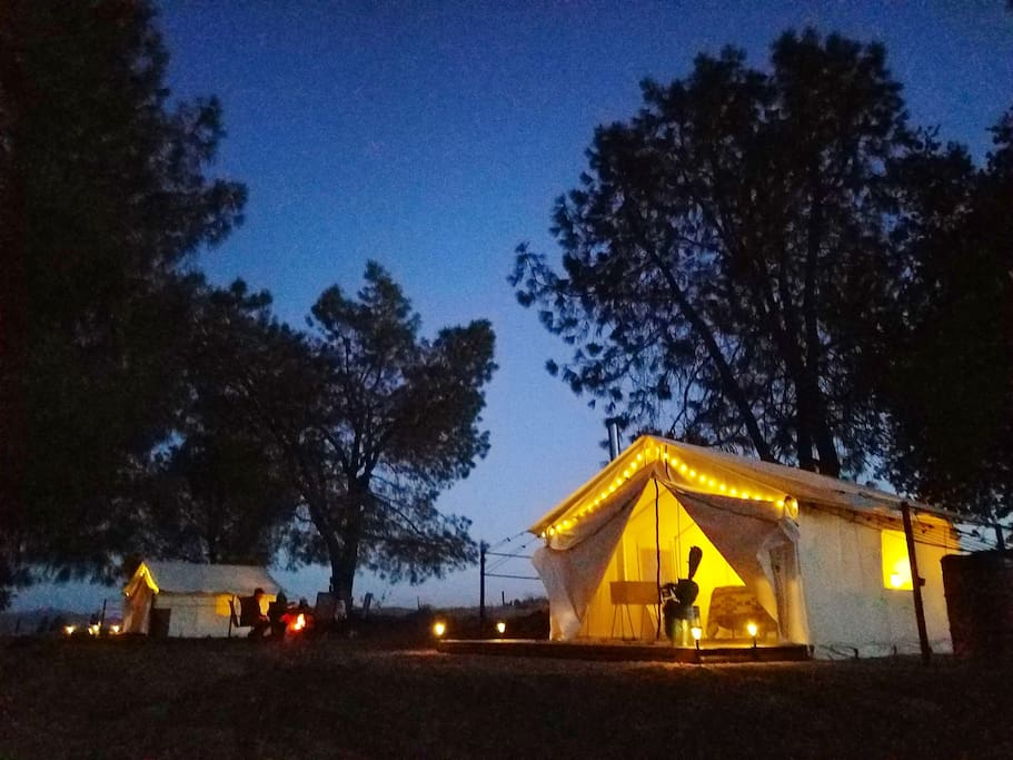 Glamping Tents under stars