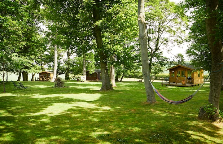 Elm - Woodland Cabin
