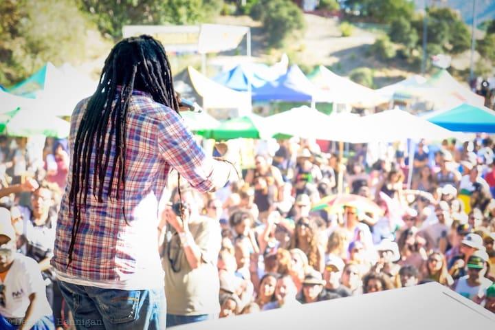 Reggae festival !!! Photo by Denis Hannigan