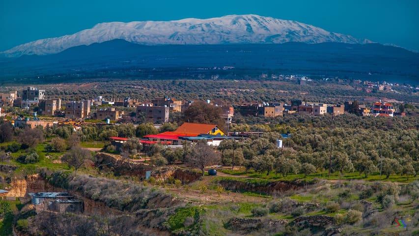 Al rass resort  between the olive,oak trees clnair