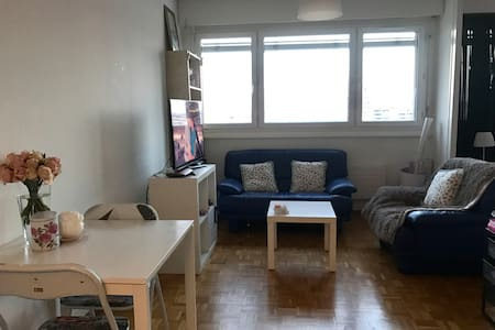 Bright cosy studio - Lancy - Lägenhet