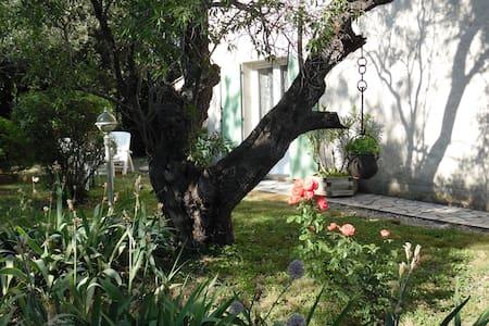 chambres d'hôtes ou gîte - Roquemaure - Bed & Breakfast