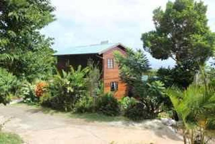 Coconut Suite - NEW LISTING - Vieux Fort