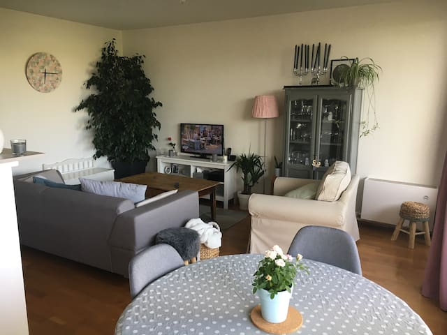 Appartement cosy de 67m²