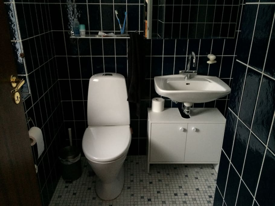 Your private toilet with shower