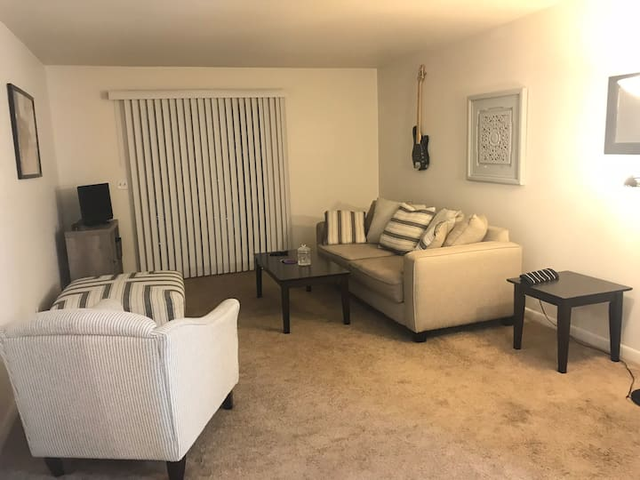 Entire Two Bedroom condo convenient to downtown